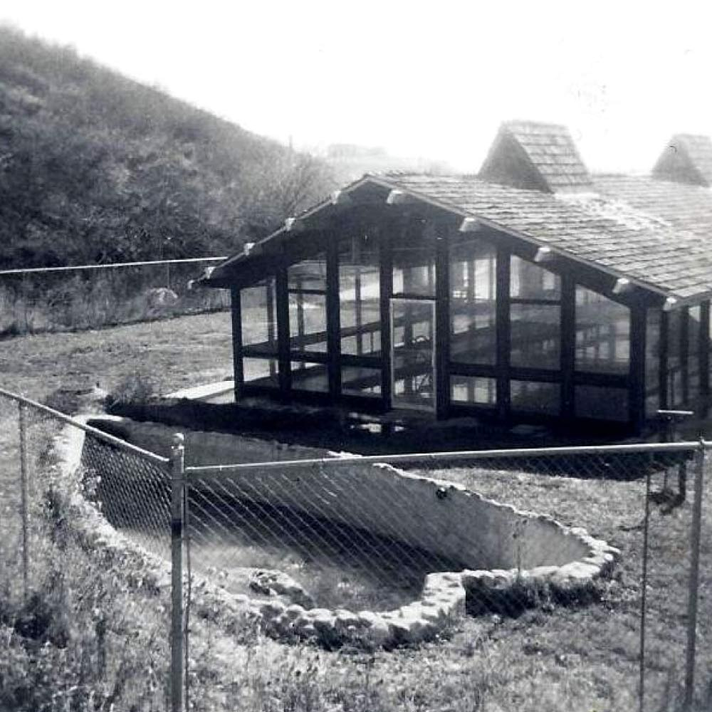 Photo of heart shaped springs and covered indoor pool in 1931.
